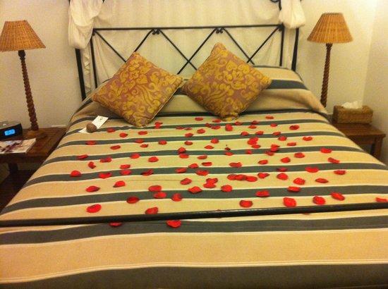 Hampshire Hotel - Queen's Garden Resort: Artificial roses