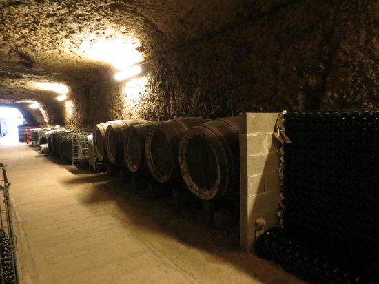 Loire Valley - Day Tours: Degustação de vinhos - Amboise