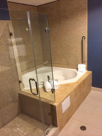 Holiday Inn Houston East-Channelview: Shower and jacuzzi.  Bathroom was big