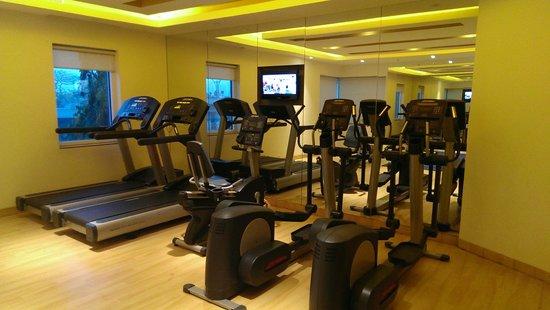 Ibis Navi Mumbai Hotel : Gym