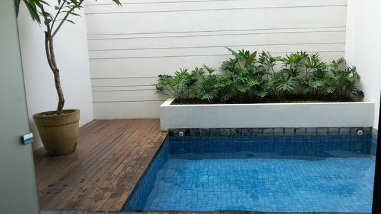The Magani Hotel and Spa: Private plunge pool for suite view from bedroom