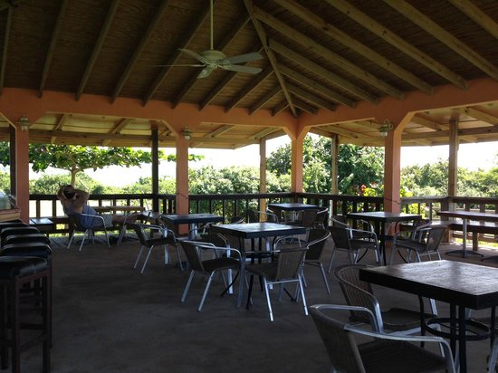 Hector's by the Sea: The large cabana on the property was a great place to watch the ocean with a (byo) drink