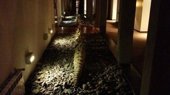 Territorio Hotel: esqueleto ballena
