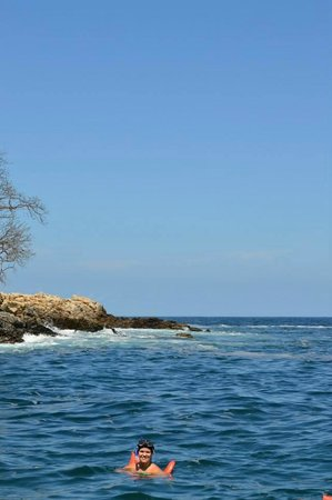 Vallarta Adventures: Gorgeous cove for snorkeling