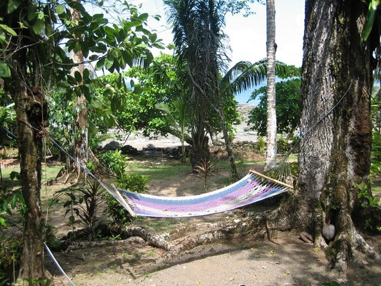 Corcovado Adventures Tent Camp: The Camp
