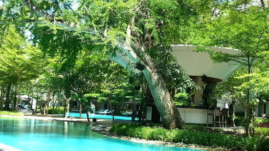 Courtyard by Marriott Bali Nusa Dua Resort : Lushious trees throughout the pool and property so well manicured