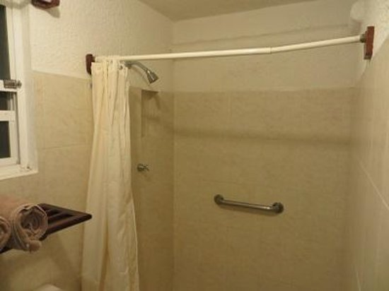 Shower. Notice the towel rack. Not in the shower wher it can be ...