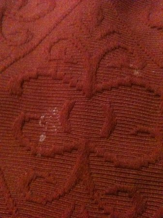 Quality Inn & Suites North: Dirty Bedspread