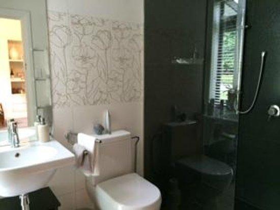 Waiorau Homestead: bathroom and shower