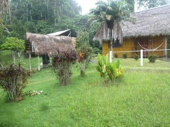 Yarina Eco Lodge: Distribución de las cabañas donde dormimos.
