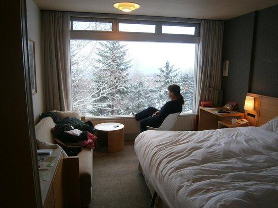 The Green Leaf Niseko Village : Our room