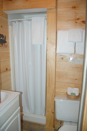 Pemi Cabins : Bathroom