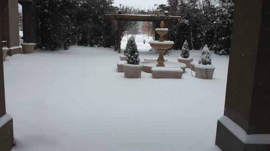 Hilton Garden Inn Fairfax照片