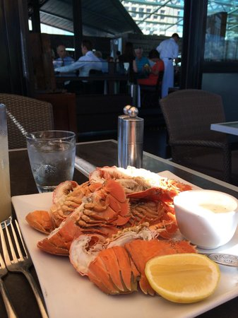 Cafe Sydney : Morton Bay Bugs with Citrus Mayonnaise on the Side