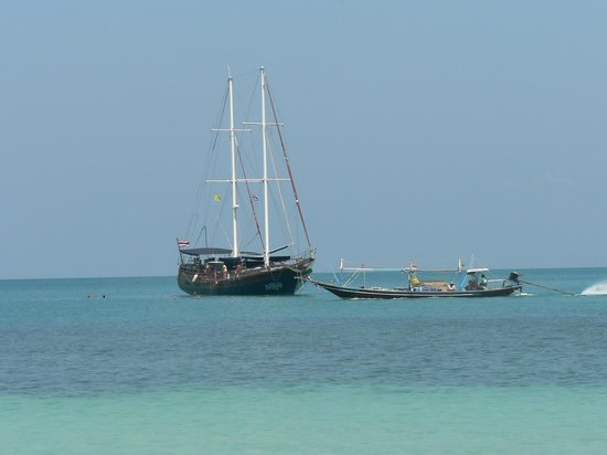 Boutique Yachting - Day Cruises & Private Charters: Fantastic trip