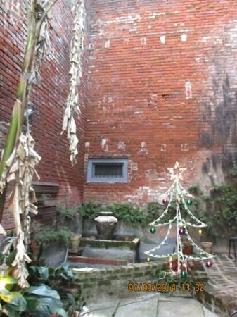 Biscuit Palace Guest House: courtyard