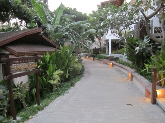 Cocohut Village Beach Resort & Spa: resort