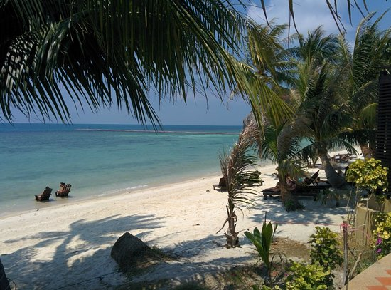 Cocohut Village Beach Resort & Spa: beach