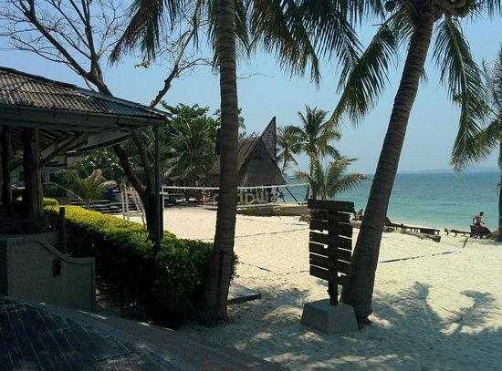 Cocohut Village Beach Resort & Spa : beach volley court