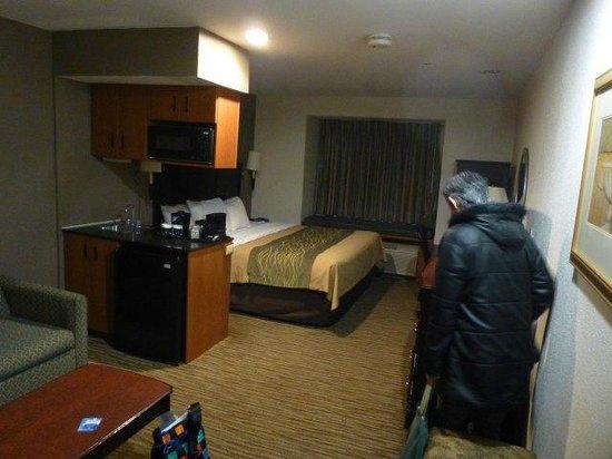 Comfort Inn & Suites Airport Dulles-Gateway: 部屋は広いです