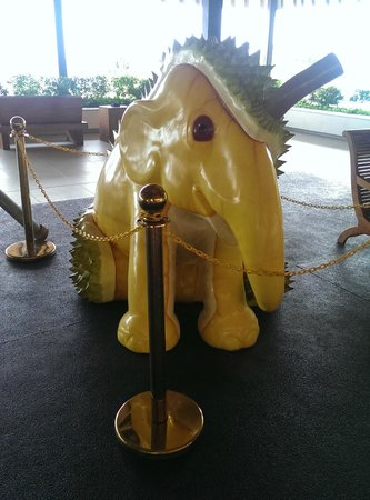 Turi Beach Resort: Durian elephant
