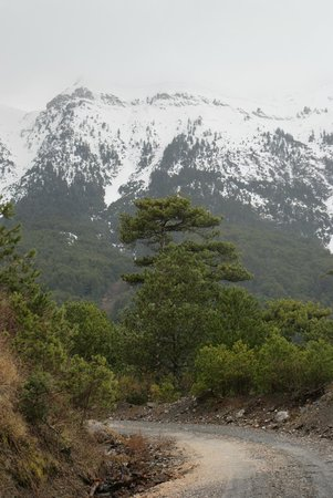 Taygetus Mountains