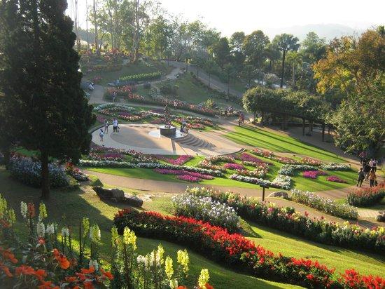 Doi Tung Royal Villa: สวนดอกไม้