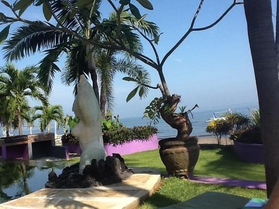 Dolphin Beach Bali: pool view