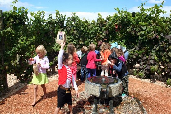 The Stables Restaurant at Vergelegen: The kids had to hunt for their treasure in the vine maze.
