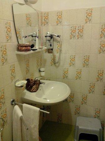 Hotel Haus Michaela: Our old school bathroom