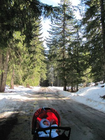 Hotel Extreme : On the way to the ski slope