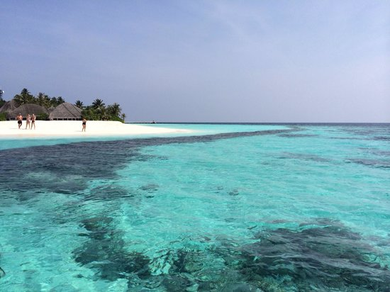 Angaga Island Resort: marzo 2014