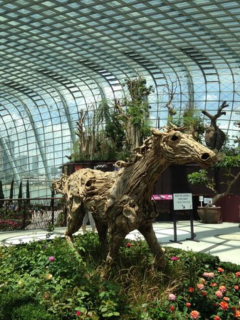 Flower Dome: Wooden Horse
