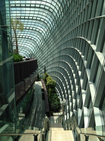 Flower Dome: Glass Walls