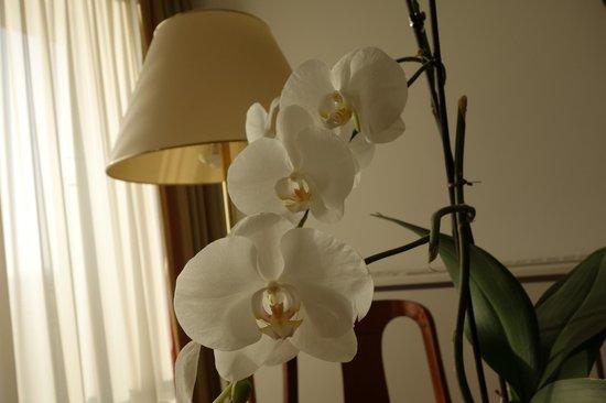 Hotel Am Parkring: цветы живые