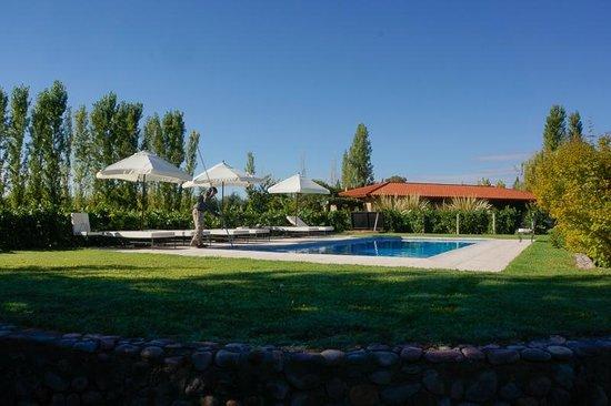 Posada Verde Oliva: Pool