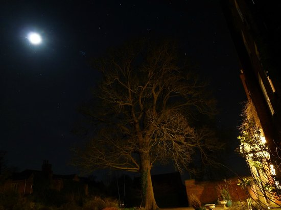 The Isle Estate Bed and Breakfast: Dark skies: we had a great view of Jupiter and her moons, as well as our moon.