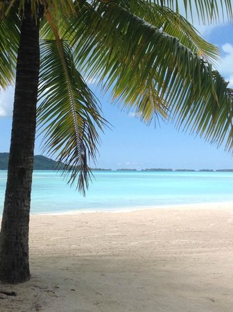 Four Seasons Resort Bora-Bora : View from the pool sunlounger