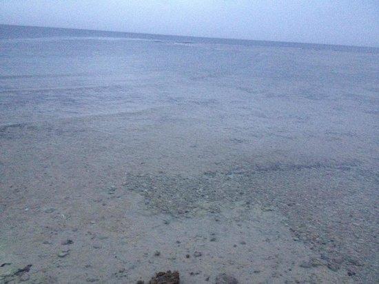Brayka Bay Reef Resort: colori