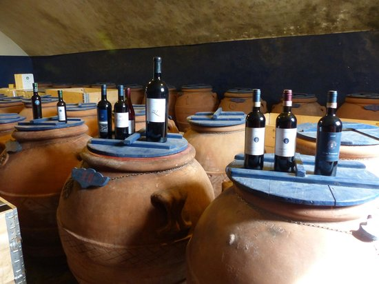 I Bike Italy : Olive Oil and Wines from Vineyard
