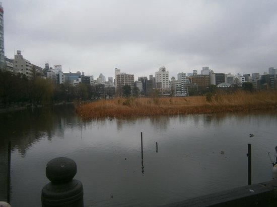 Shinobazu Pond : 外観
