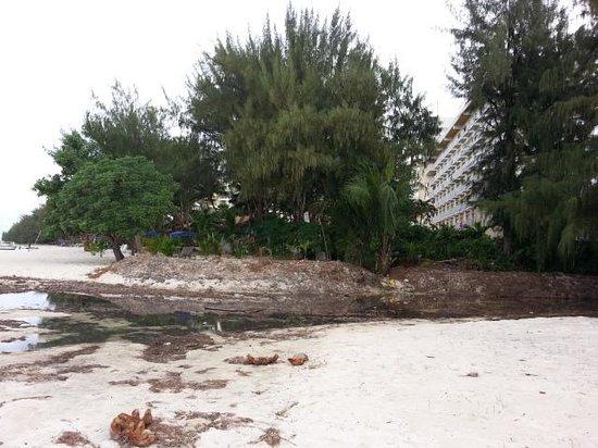 Grandvrio Resort Saipan : Don't swim here!