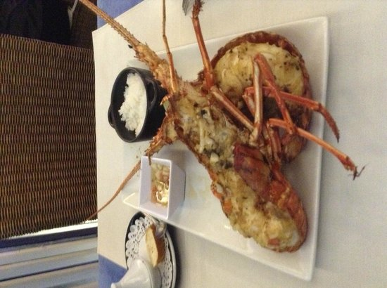 Restaurant le Soleil : la mia aragosta....