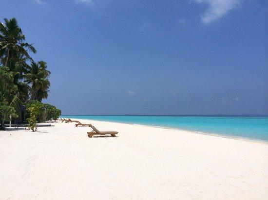 The Sun Siyam Iru Fushi Maldives: Russell & tasha