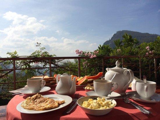 Ella Tea Garden : Breakfast in Paradise!