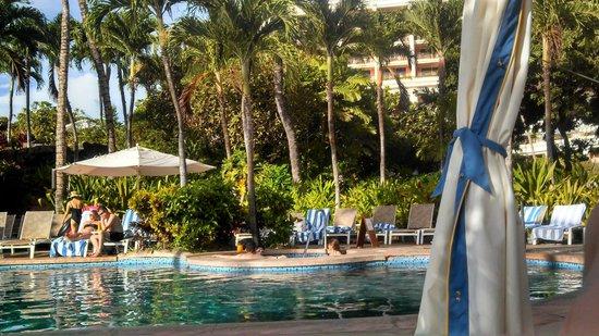 Grand Wailea - A Waldorf Astoria Resort: One of the 9 pools