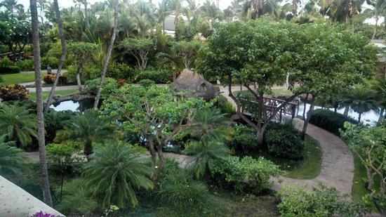 Grand Wailea - A Waldorf Astoria Resort: View from Room
