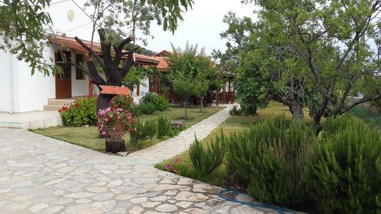 Yarimada Butik Otel: mesudiye