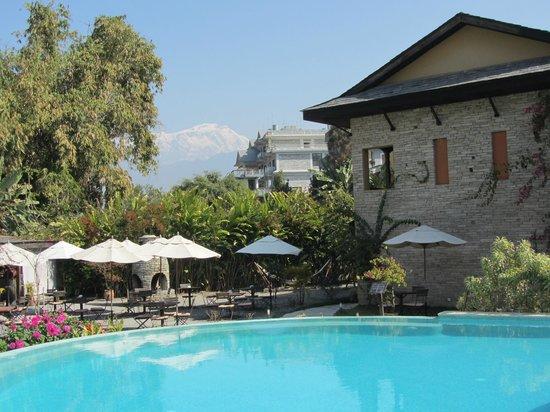 Temple Tree Resort & Spa: La piscine