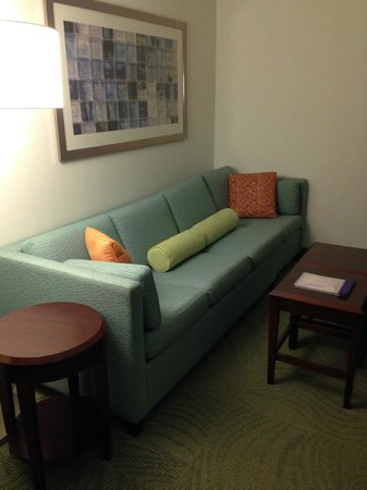 SpringHill Suites by Marriott Florence: Pull-Out Couch